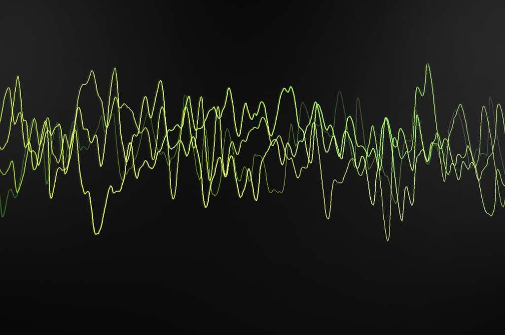 digital voice identification