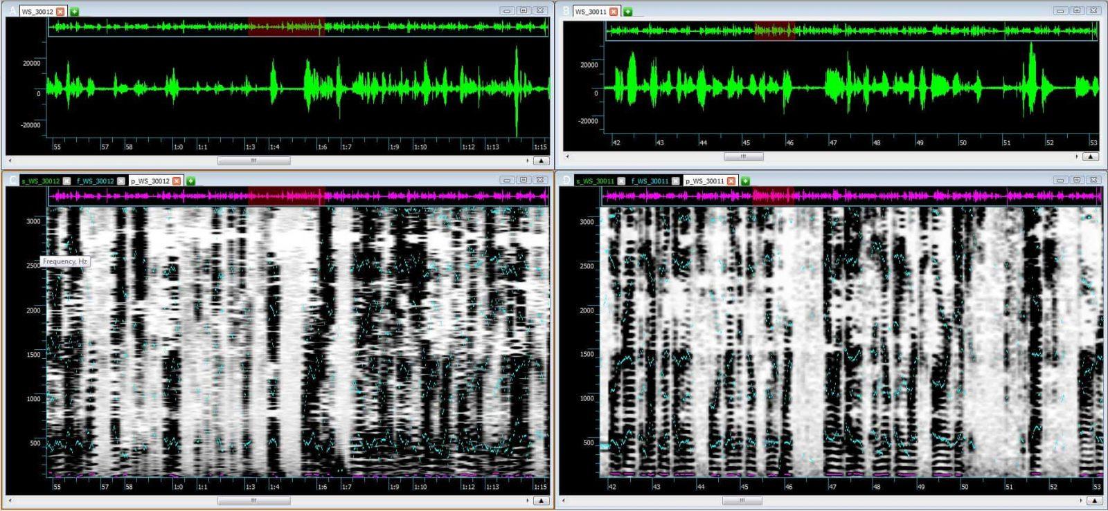 sis-waveform-spectrogram