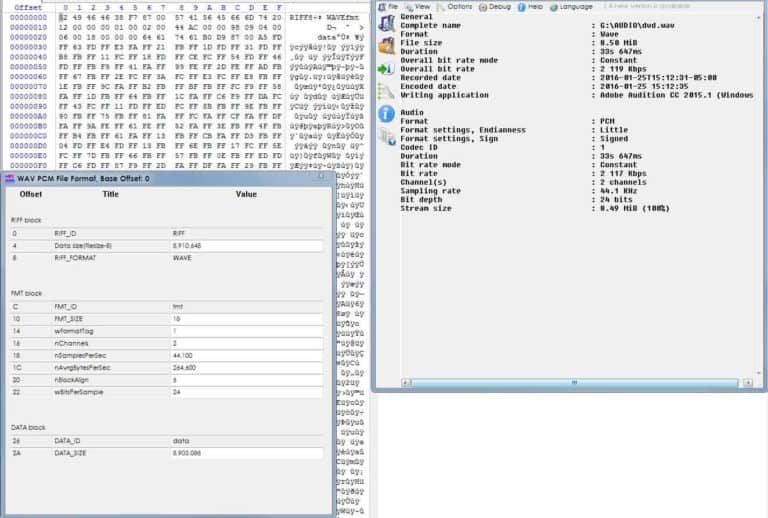 hex and mediainfo 768x518 - Forensic Audio Analysis Services